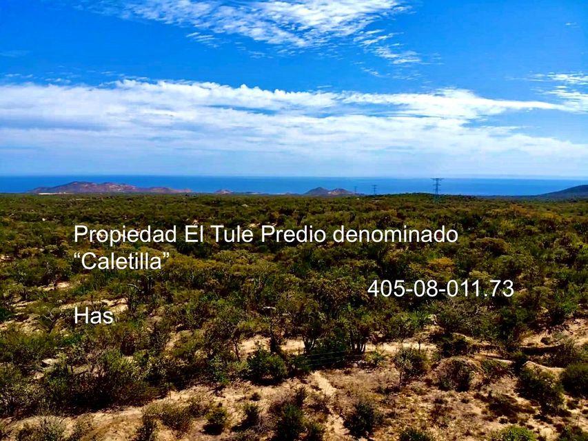 property Chileno /inland, PREDIO CALETILLA 1461