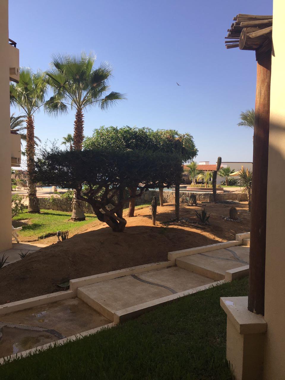 property Tamar Brisa 101 529